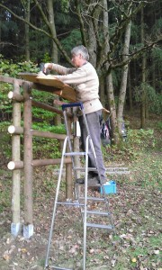 Holzartenxylophon Bau